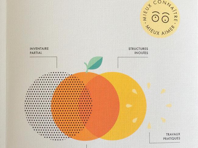 Le grand précis des fruits à éplucher